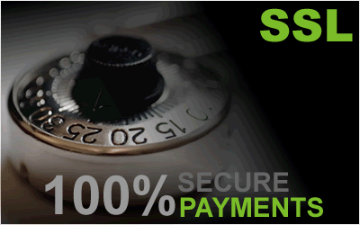 secure-payments-home